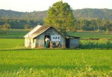 Famous Toddy Shops In Kerala 2016