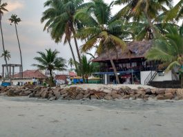Andhakaranazhi Beach One Of The Place To Visit In Alleppey