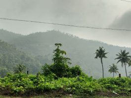 Nilgiri's hill was listed one of the most visited hill stations in the world by UNESCO